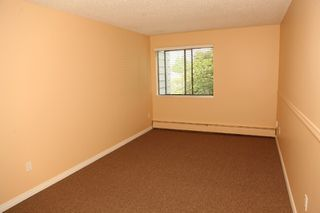 "Photo 7: 204 7473 140 Street in Surrey: East Newton Condo for sale in ""GLENCOE ESTATES"" : MLS®# R2204685"