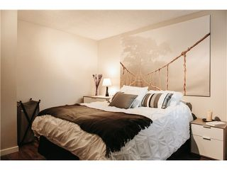 Photo 5: # 301 2239 ST CATHERINES ST in Vancouver: Mount Pleasant VE Condo for sale (Vancouver East)  : MLS®# V980572