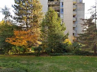 Photo 1: 206 6689 WILLINGDON AVENUE in Burnaby: Metrotown Condo for sale (Burnaby South)  : MLS®# R2218866