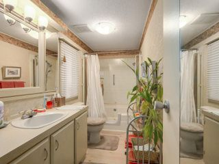 Photo 15: 6 145 KING EDWARD Street in Coquitlam: Coquitlam East Manufactured Home for sale : MLS®# R2248856