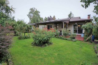 Photo 20: 3722 HARWOOD Crescent in Abbotsford: Central Abbotsford House for sale : MLS®# R2309116