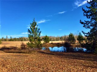 "Photo 12: LOT 1 SMAASLET Road in Prince George: Beaverley Land for sale in ""BEAVERLEY"" (PG Rural West (Zone 77))  : MLS®# R2323246"