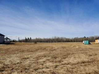 Photo 13: 12 26510- Twp Rd 511: Rural Parkland County Rural Land/Vacant Lot for sale : MLS®# E4151743