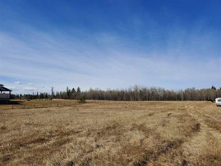 Photo 9: 12 26510- Twp Rd 511: Rural Parkland County Rural Land/Vacant Lot for sale : MLS®# E4151743