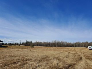 Photo 8: 12 26510- Twp Rd 511: Rural Parkland County Rural Land/Vacant Lot for sale : MLS®# E4151743