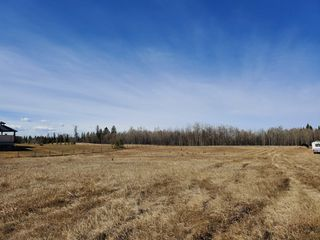 Photo 11: 12 26510- Twp Rd 511: Rural Parkland County Rural Land/Vacant Lot for sale : MLS®# E4151743