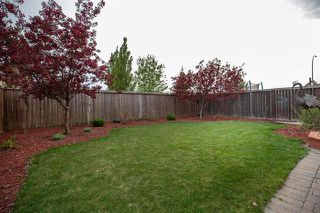 Photo 19: 12 Montvale Crescent in Winnipeg: Royalwood Residential for sale (2J)  : MLS®# 1914357