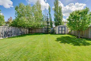 Photo 30: 54 SUNFLOWER Crescent: Sherwood Park House for sale : MLS®# E4161669