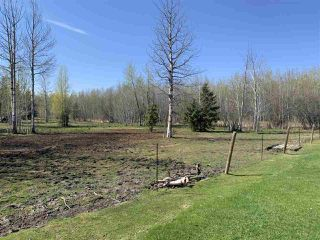 Photo 35: 49132 RR 70: Rural Brazeau County House for sale : MLS®# E4192652