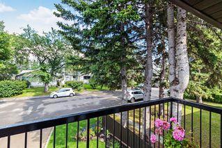 Photo 27: 3719 42 Street SW in Calgary: Glenbrook Semi Detached for sale : MLS®# A1015771