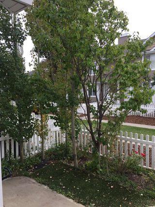 Photo 5: 17 3075 TRELLE Crescent in Edmonton: Zone 14 Townhouse for sale : MLS®# E4214202