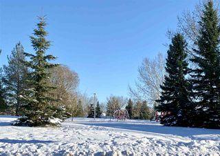 Photo 47: 267 HEAGLE Crescent in Edmonton: Zone 14 House for sale : MLS®# E4221182