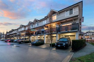 """Photo 20: 25 10151 240 Street in Maple Ridge: Albion Townhouse for sale in """"Albion Station"""" : MLS®# R2522553"""