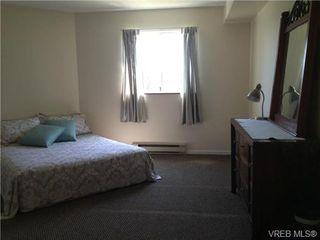Photo 10: 205 3206 Alder St in VICTORIA: SE Quadra Condo for sale (Saanich East)  : MLS®# 673559