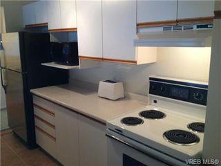 Photo 8: 205 3206 Alder St in VICTORIA: SE Quadra Condo for sale (Saanich East)  : MLS®# 673559