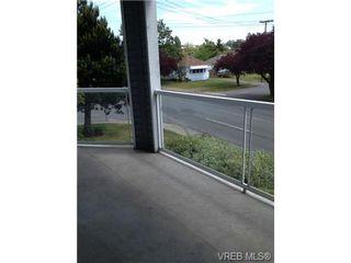 Photo 16: 205 3206 Alder St in VICTORIA: SE Quadra Condo for sale (Saanich East)  : MLS®# 673559