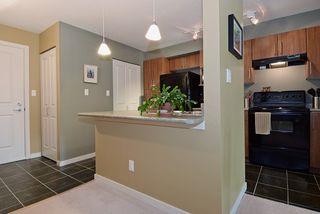 "Photo 19: 210 1576 GRANT Avenue in Port Coquitlam: Glenwood PQ Condo for sale in ""THE BROWSTONE"" : MLS®# R2000830"
