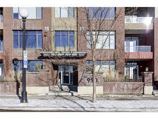 Photo 23: 239 950 CENTRE Avenue NE in Calgary: Bridgeland/Riverside Condo for sale : MLS®# C4045823