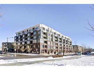 Photo 22: 239 950 CENTRE Avenue NE in Calgary: Bridgeland/Riverside Condo for sale : MLS®# C4045823