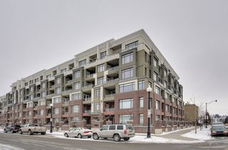 Photo 16: 512 990 Centre Avenue NE in Pontefino 2: Apartment for sale : MLS®# C3607031
