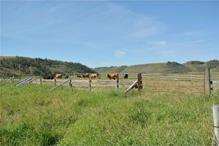 Photo 36: 33169 BIG HILL SPRINGS Road in Rural Rocky View County: Rural Rocky View MD House for sale : MLS®# C4110973