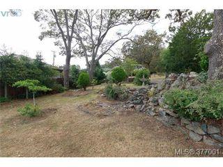 Photo 3: 3601 Cedar Hill Rd in VICTORIA: SE Cedar Hill House for sale (Saanich East)  : MLS®# 756857