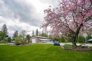 Photo 14: 27060 20 Avenue in Langley: Otter District House for sale : MLS®# R2158010