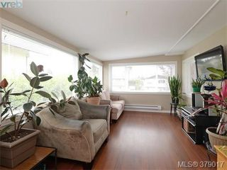 Photo 12: 564 Judah Street in VICTORIA: SW Glanford Single Family Detached for sale (Saanich West)  : MLS®# 379017