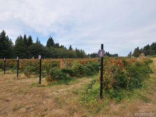 Photo 11: 765 Kilmalu Rd in : ML Mill Bay Single Family Detached for sale (Malahat & Area)  : MLS®# 680324