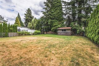 Photo 13: 21540 123 Avenue in Maple Ridge: West Central House for sale : MLS®# R2191269