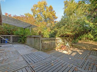 Photo 18: 641 Oliver St in VICTORIA: OB South Oak Bay House for sale (Oak Bay)  : MLS®# 770234