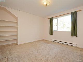 Photo 15: 641 Oliver St in VICTORIA: OB South Oak Bay Single Family Detached for sale (Oak Bay)  : MLS®# 770234