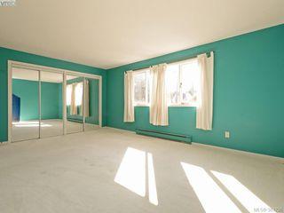 Photo 11: 641 Oliver St in VICTORIA: OB South Oak Bay Single Family Detached for sale (Oak Bay)  : MLS®# 770234