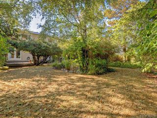 Photo 20: 641 Oliver St in VICTORIA: OB South Oak Bay Single Family Detached for sale (Oak Bay)  : MLS®# 770234