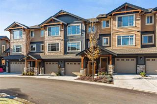 "Photo 1: 112 11305 240 Street in Maple Ridge: Cottonwood MR Townhouse for sale in ""MAPLE HEIGHTS"" : MLS®# R2220533"