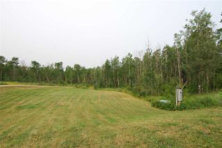 Photo 7: 57013 Highway 777: Rural Barrhead County House for sale : MLS®# E4101193
