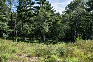 Photo 9: Lot 36 Hawthorn Road in Mahone Bay: 405-Lunenburg County Vacant Land for sale (South Shore)  : MLS®# 201808063