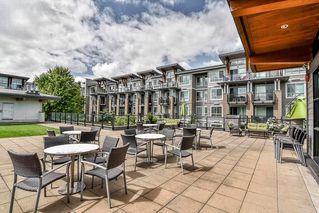 "Photo 19: 417 6628 120 Street in Surrey: West Newton Condo for sale in ""SALUS"" : MLS®# R2265802"