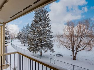 Photo 42: 228 20 MIDPARK Crescent SE in Calgary: Midnapore Semi Detached for sale : MLS®# C4222398
