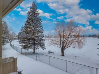 Photo 43: 228 20 MIDPARK Crescent SE in Calgary: Midnapore Semi Detached for sale : MLS®# C4222398