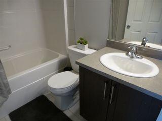 Photo 21: 8516 ELLIS Link in Edmonton: Zone 57 House for sale : MLS®# E4153166