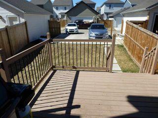 Photo 30: 8516 ELLIS Link in Edmonton: Zone 57 House for sale : MLS®# E4153166