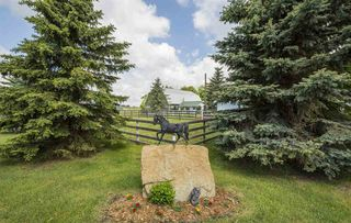 Photo 5: 52110 RGE RD 273: Rural Parkland County House for sale : MLS®# E4161351