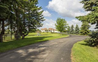 Photo 4: 52110 RGE RD 273: Rural Parkland County House for sale : MLS®# E4161351