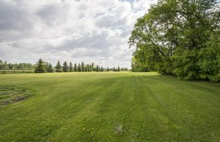 Photo 29: 52110 RGE RD 273: Rural Parkland County House for sale : MLS®# E4161351