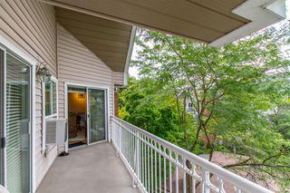 """Photo 14: 405 2963 BURLINGTON Drive in Coquitlam: North Coquitlam Condo for sale in """"BURLINGTON ESTATES"""" : MLS®# R2393460"""