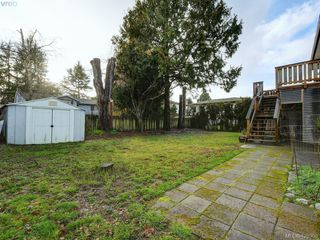 Photo 19: 1907 High Park Place in VICTORIA: SE Gordon Head Single Family Detached for sale (Saanich East)  : MLS®# 420398
