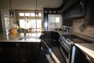 Photo 14: 2457 CAMERON RAVINE Drive in Edmonton: Zone 20 House for sale : MLS®# E4188388
