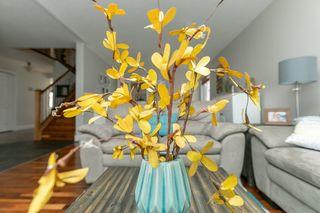 Photo 6: 29 CIMMARON Way: Sherwood Park House for sale : MLS®# E4190877