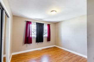 Photo 33: 10546 157 Street in Edmonton: Zone 21 House for sale : MLS®# E4195239